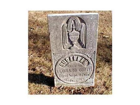 CURTIS, SUSANNAH - Butler County, Iowa | SUSANNAH CURTIS