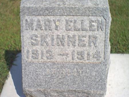 SKINNER, MARY - Butler County, Iowa   MARY SKINNER