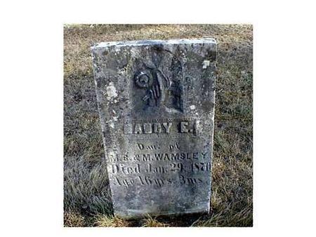WAMSLEY, NANCY E. - Butler County, Iowa   NANCY E. WAMSLEY