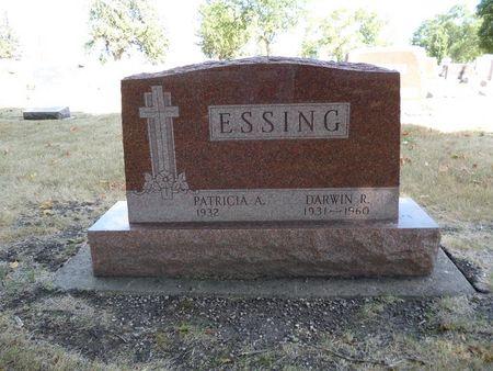 ESSING, DARWIN R. - Calhoun County, Iowa | DARWIN R. ESSING
