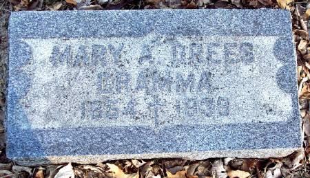 DREES, MARY A - Carroll County, Iowa | MARY A DREES
