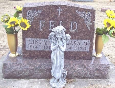 FELD, LINUS H - Carroll County, Iowa | LINUS H FELD