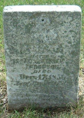 FERGUSON, ELIZA C. - Carroll County, Iowa   ELIZA C. FERGUSON