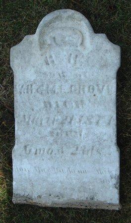GROVE, B. H. - Carroll County, Iowa   B. H. GROVE