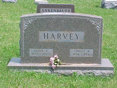 HARVEY, OLIVE E. - Carroll County, Iowa | OLIVE E. HARVEY