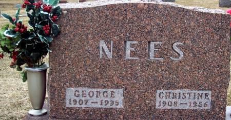 NEES, GEORGE - Carroll County, Iowa   GEORGE NEES