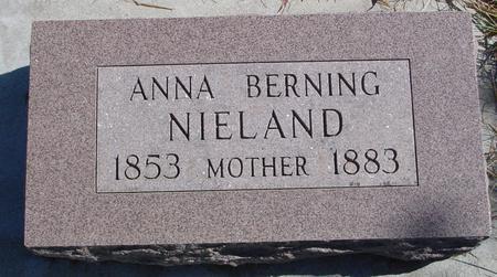 NIELAND, ANNA - Carroll County, Iowa | ANNA NIELAND
