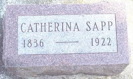 SCHMIDT SAPP, CATHERINA - Carroll County, Iowa | CATHERINA SCHMIDT SAPP