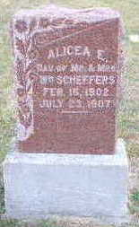 SCHEFFERS, ALICEA - Carroll County, Iowa | ALICEA SCHEFFERS
