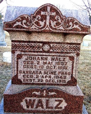 WALTZ, JOHANN - Carroll County, Iowa | JOHANN WALTZ
