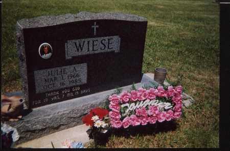 WIESE, JULIE, ANN - Carroll County, Iowa | JULIE, ANN WIESE