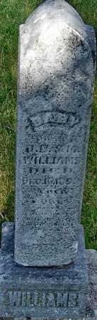 WILLIAMS, BABY - Carroll County, Iowa | BABY WILLIAMS