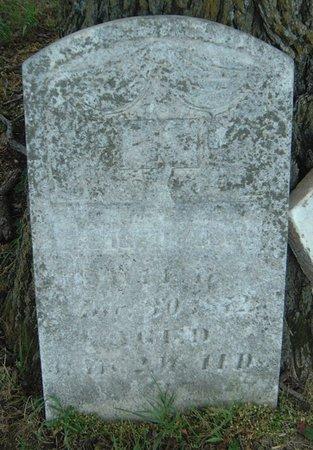 YOUNG, GEORGE N. - Carroll County, Iowa | GEORGE N. YOUNG