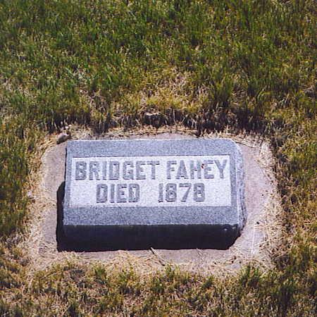 FAHEY, BRIDGET - Cass County, Iowa | BRIDGET FAHEY