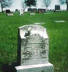 JOHNSON, DALE JOSEPH - Cass County, Iowa | DALE JOSEPH JOHNSON