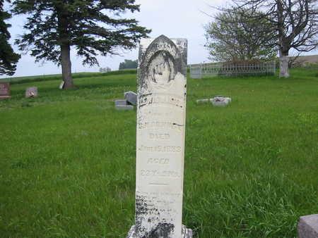 WHITE, LEWIS WALTER - Cass County, Iowa | LEWIS WALTER WHITE