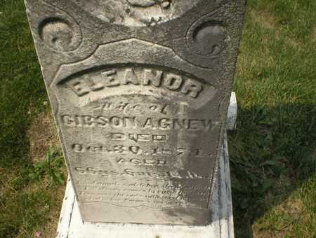 AGNEW, ELEANOR - Cedar County, Iowa | ELEANOR AGNEW