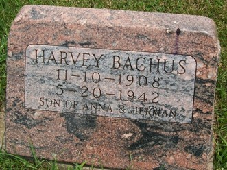 BACHUS, HARVEY W. - Cedar County, Iowa | HARVEY W. BACHUS
