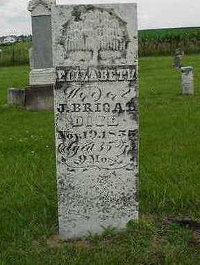 BRIGAL, ELIZABETH - Cedar County, Iowa | ELIZABETH BRIGAL