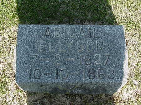 ELLYSON, ABIGAIL - Cedar County, Iowa | ABIGAIL ELLYSON