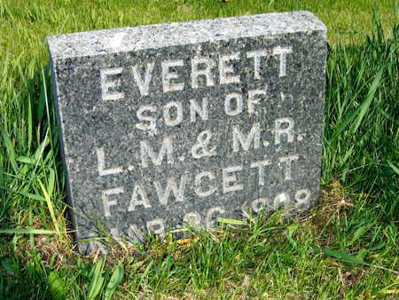 FAWCETT, EVERETT - Cedar County, Iowa   EVERETT FAWCETT