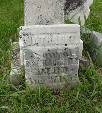 HAGERMAN, NATHANIEL - Cedar County, Iowa | NATHANIEL HAGERMAN