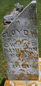 HAMILTON, FLOYD W. - Cedar County, Iowa   FLOYD W. HAMILTON