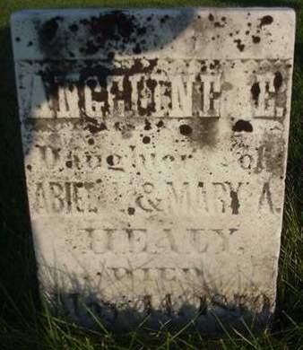 HEALY, ANGELINE E. - Cedar County, Iowa | ANGELINE E. HEALY