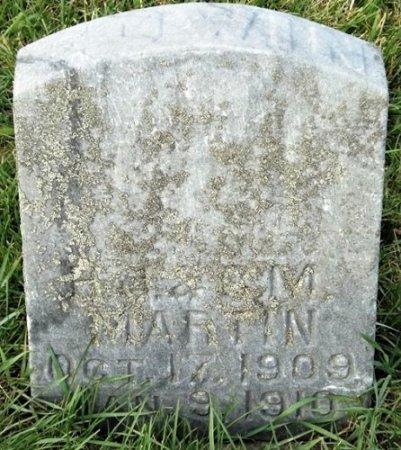 MARTIN, EDWIN - Cedar County, Iowa | EDWIN MARTIN