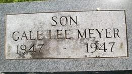 MEYER, GALE LEE - Cedar County, Iowa | GALE LEE MEYER
