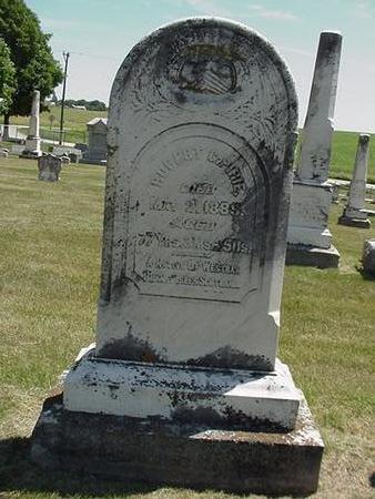 PIRIE, ROBERT - Cedar County, Iowa | ROBERT PIRIE