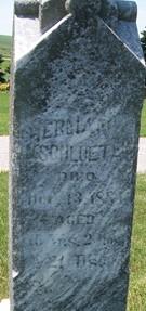 SCHLUETER, HERMAN - Cedar County, Iowa | HERMAN SCHLUETER