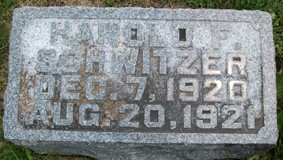 SCHWITZER, HAROLD F. - Cedar County, Iowa   HAROLD F. SCHWITZER