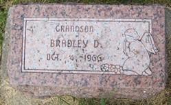 THIES, BRADLEY D. - Cedar County, Iowa | BRADLEY D. THIES