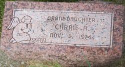 THIES, CARRIE A. - Cedar County, Iowa | CARRIE A. THIES