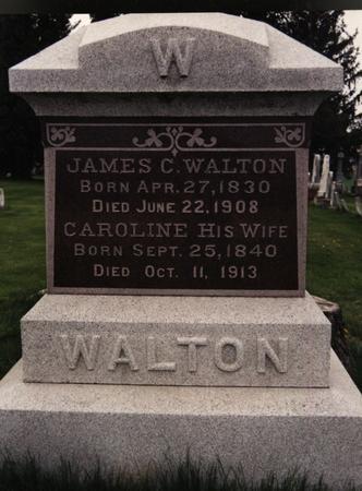COPELAND WALTON, CAROLINE - Cedar County, Iowa | CAROLINE COPELAND WALTON