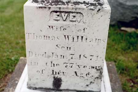 WILLIAMS, EVE - Cedar County, Iowa | EVE WILLIAMS