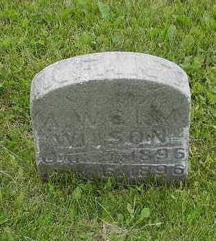 WILSON, INFANT SON - Cedar County, Iowa | INFANT SON WILSON