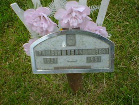 ALBERT, PAMELA JEAN - Cerro Gordo County, Iowa   PAMELA JEAN ALBERT