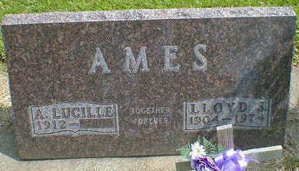 AMES, LLOYD S. - Cerro Gordo County, Iowa | LLOYD S. AMES