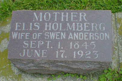 HOLMBERG ANDERSON, ELIS - Cerro Gordo County, Iowa | ELIS HOLMBERG ANDERSON