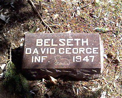 BELSETH, DAVID GEORGE - Cerro Gordo County, Iowa | DAVID GEORGE BELSETH