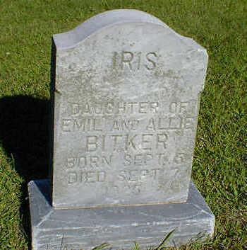 BITKER, IRIS - Cerro Gordo County, Iowa | IRIS BITKER