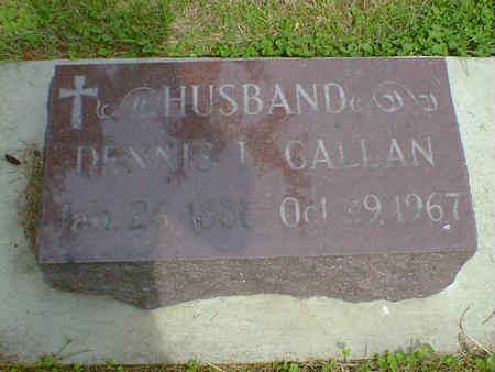 CALLAN, DENNIS L. - Cerro Gordo County, Iowa | DENNIS L. CALLAN