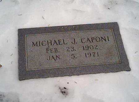 CAPONI, MICHAEL - Cerro Gordo County, Iowa | MICHAEL CAPONI