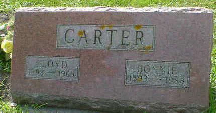 CARTER, FLOYD - Cerro Gordo County, Iowa | FLOYD CARTER