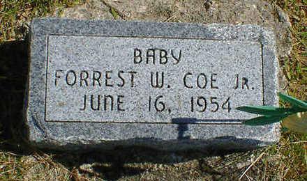 COE, FORREST W. JR. - Cerro Gordo County, Iowa | FORREST W. JR. COE