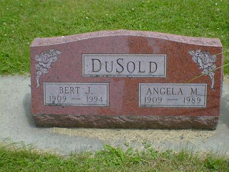 DUSOLD, BERT J. - Cerro Gordo County, Iowa | BERT J. DUSOLD