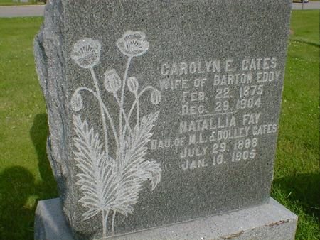 GATES EDDY, CAROLYN E. - Cerro Gordo County, Iowa | CAROLYN E. GATES EDDY