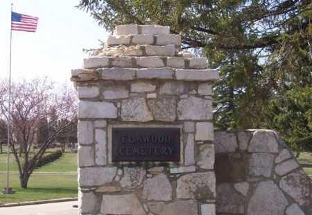 ELMWOOD, CEMETERY - Cerro Gordo County, Iowa | CEMETERY ELMWOOD